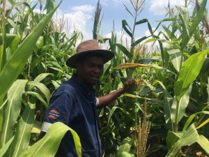 Farming Courses South Africa - How to take an online Farming and Agricultural course